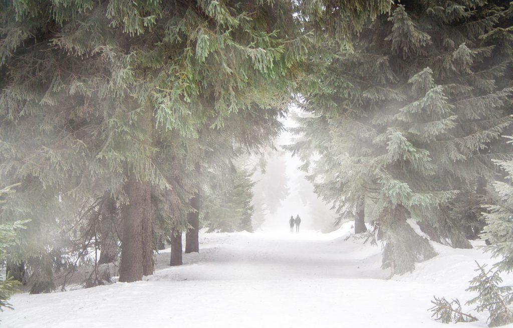 kurtka do biegania zimą