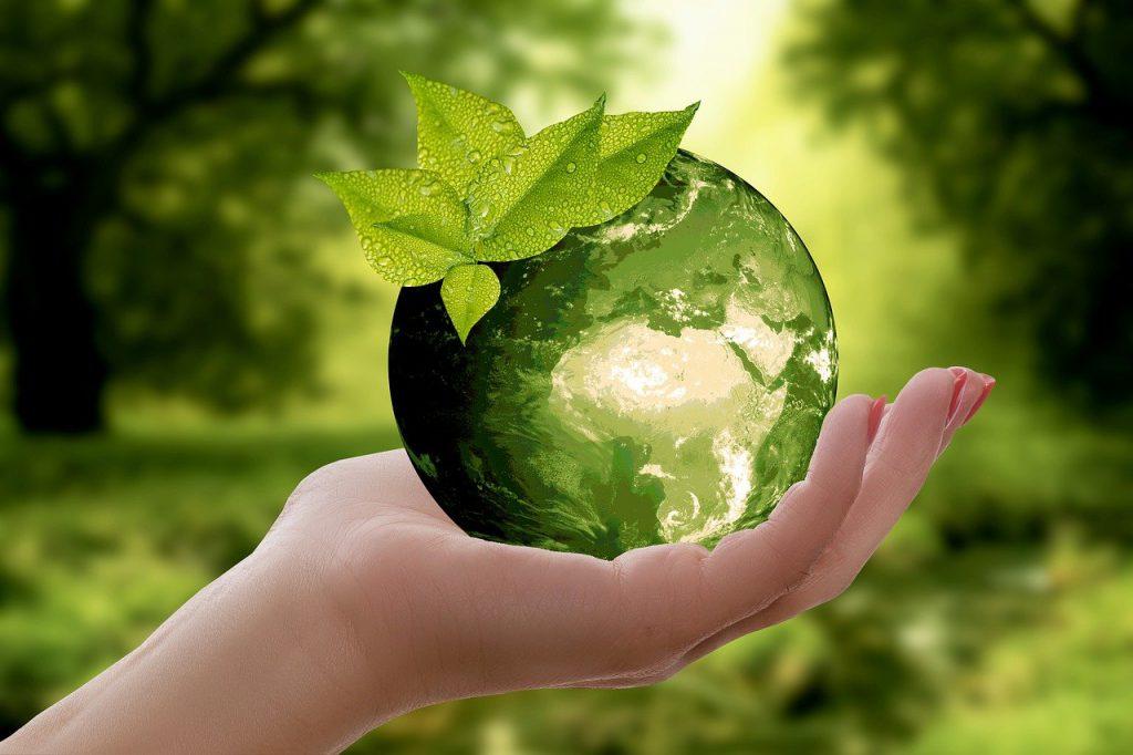 jak dbać o ziemię